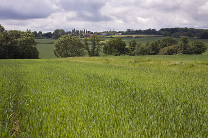 The farm landscape at Sissinghurst Castle in June
