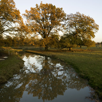 The River Dene with autumnal colour in the trees, from the bridge in the deer park at Charlecote Park, Warwickshire