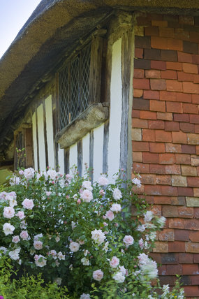 An upper window, and tile-hung corner of Alfriston Clergy House, a fourteenth-century Wealden hall house in a cottage style garden in East Sussex