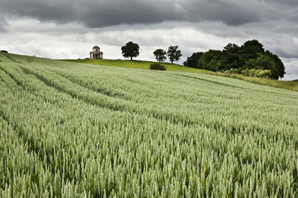 The Panorama Tower viewed from the north east over a field of grain at Croome Park, Croome D'Abitot, Worcestershire