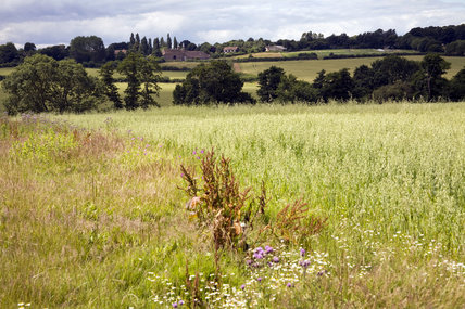 A view over the surrounding farmland in July towards the barn and buildings of Sissinghurst Castle Garden, Cranbrook, Kent