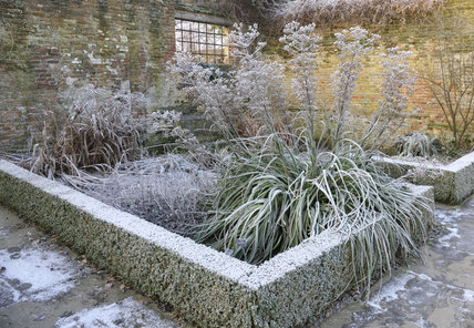 Frost covering the low box hedging in the garden at Sissinghurst Castle Garden, Kent