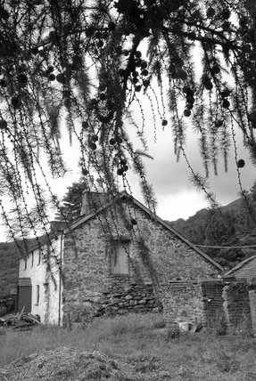 Black & white photograph of traditional farm building at Hafod Y Llan, Snowdonia
