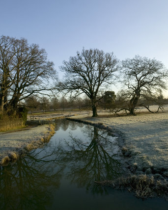 The River Dene in December at Charlecote Park, Warwickshire