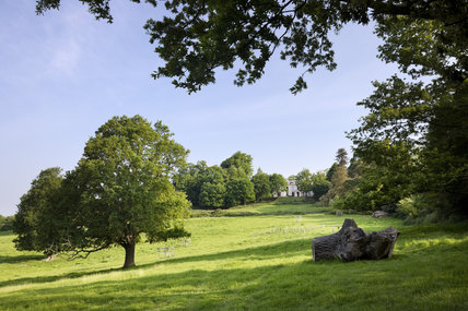 A long view of Leith Hill Place over the grounds at Dorking, Surrey