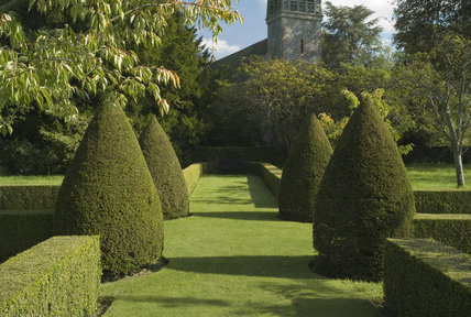 View through a topiary avenue to All Saints Church from The Orchard at Hinton Ampner, Hampshire