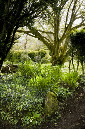 The garden in April at Godolphin House, near Helston, Cornwall