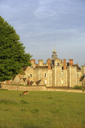The deerpark in the foreground at Knole, Sevenoaks, Kent