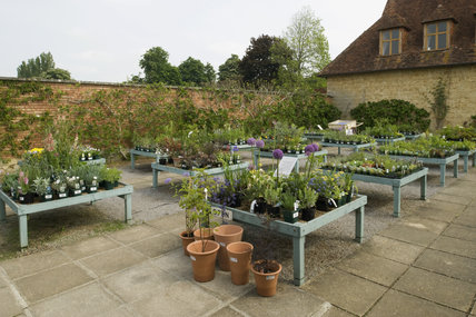 The Plant Centre in the garden at Barrington Court, Somerset