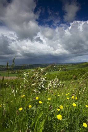 Cloudy skies over Blackmore Vale from Hod Hill (National Trust) near Blandford, Dorset