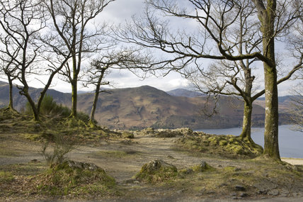 The Surprise View, Borrowdale, Lake District, Cumbria in early  spring