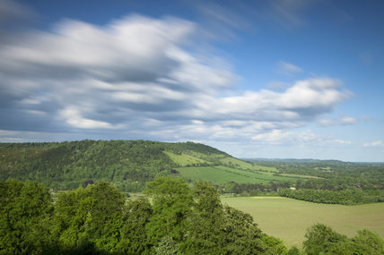 A view of Box Hill, Surrey, with rolling downland and woodland in May