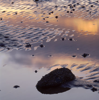 Sunset reflected in tidal pools, just south of Greyabbey