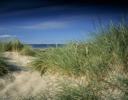 St. Aiden's Dunes stretching from Monk's House to Seahouses.