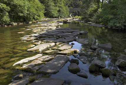 The effects of the drought during July and August 2006 are seen at the River Allen, Northumberland