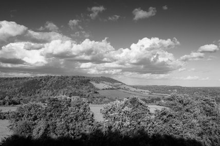 A black & white view of Box Hill, Surrey, with rolling downland and woodland in May