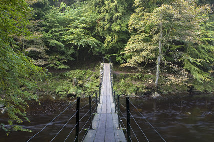 The suspension bridge at Allen Banks, Northumberland