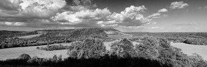 A panoramic, black & white view of Box Hill, Surrey, with rolling downland and woodland in May