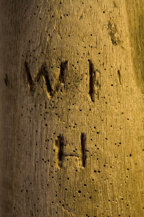 Letters marked in a wooden post, with woodworm damage, at Stainsby Mill, a working, water-powered flour mill on the  Hardwick Hall Estate, Derbyshire