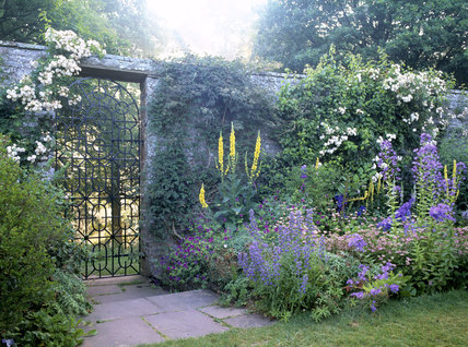 Wide herbaceous border and wrought iron gate in the garden at Acorn Bank