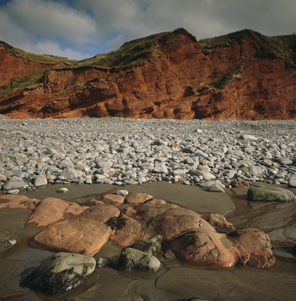 Vibrant reddish cliffs and grey rocks at Peppercombe Valley