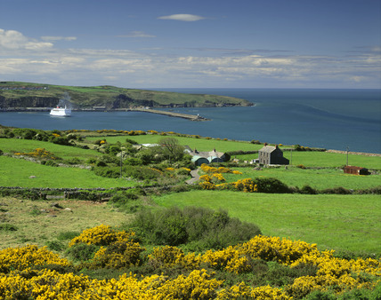 Farm buildings with Fishguard Bay and the StennaLine ferry leaving harbour in the background