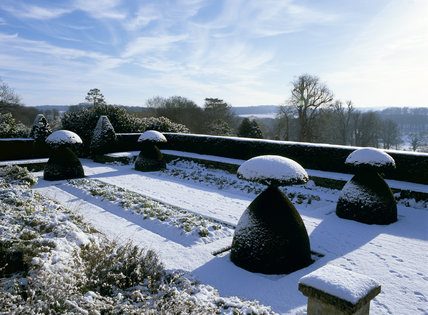 Snow-covered topiary in the garden below the south lawn at Hinton Ampner