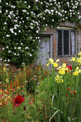 Part Of The Cottage Garden At Sissinghurst Castle Garden With The First  Rose Planted By Vita Sackville West, The White Madame Alfred Carriere, ...