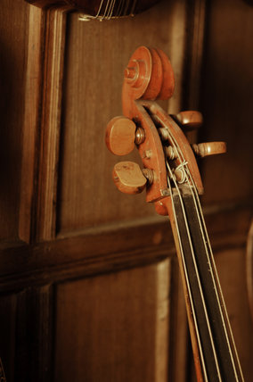 Head and neck of a double bass, part of the musical instrument collection of Charles Paget Wade in the Music Room at Snowshill Manor, Gloucestershire