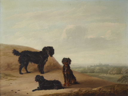 Three Sporting Dogs in a Landscape, with a distant View of Windsor Castle