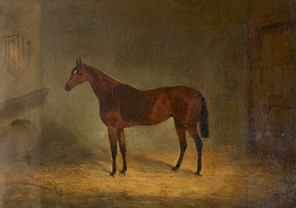 Lady Liverpool', a Bay Horse in a Stable