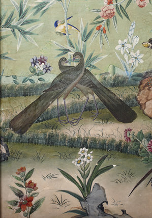 Floral Chinese Wallpaper at Ickworth