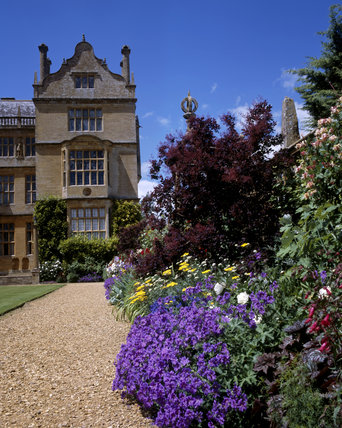 Part of house in East Court with beautiful summer border, Geranium, Acheillea, Cotinus coggygria