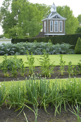 The vegetable garden with the Tall Pavillion in the distance at Westbury Court Garden, Gloucestershire, UK