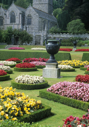 The brightly coloured bedding replanted in Victorian style with the C15th church in the background, at Lanhydrock, Cornwall