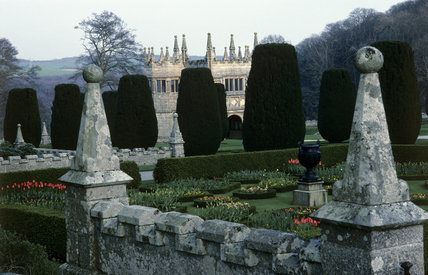 A view of the Gatehouse through clipped yews across the garden and lichen covered castellated wall