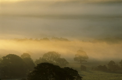 A mist filled valley at dawn