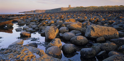 View of Dunstanburgh Castle from the north west taken in evening sunlight