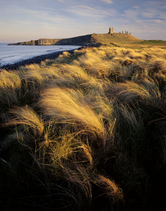 View of Dunstanburgh Castle from the north west in the late afternoon light
