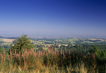 View from the path with flowers in the foreground, to Clent Village, Hereford & Worcester