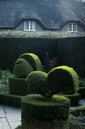 Hidcote, Topiary in The White Garden
