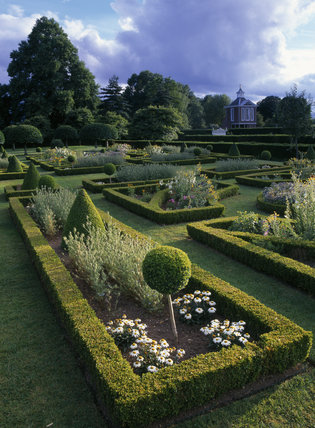 The parterre at Westbury Court Garden in late afternoon sunshine showing the formal box hedges and topiary