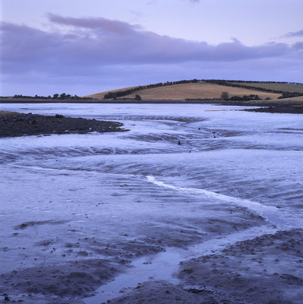 Ballymorran Bay at low tide showing the water receding from the tidal mud flats of Strangford Lough