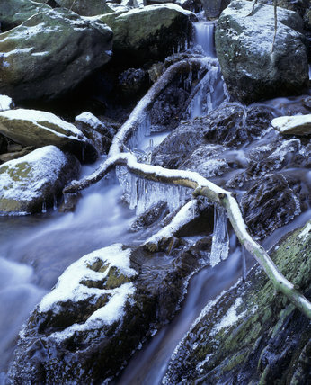 Tilberthwaite Gill in winter with icicles, hanging from branches over the stream