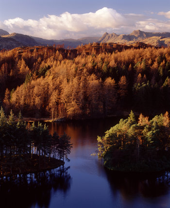 (FL) An autumnal view of Tarn Hows near Coniston Water in the Lake District with the Langdale Pikes in the background