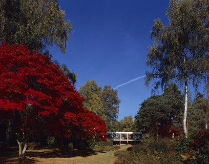The Homewood, the Modernist house built in 1938 by architect Patrick Gwynne, visible through the marvelous autumn colours of the landscaped garden