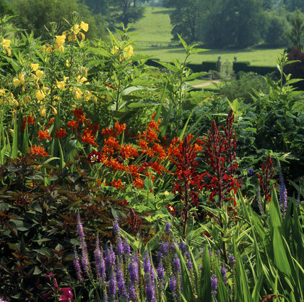 A colourful flower border at Powis Castle, with a gate in the background leading to a grassy glade