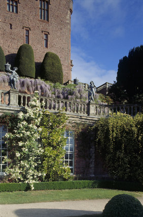 Detail of the terrace at Powis showing topiary, statuary and wisteria in bloom