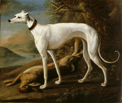 GREYHOUND AND DEAD HARE, 1731 painted by William Sartorius