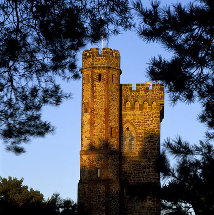 Glimpse through trees of Leith Hill Tower, Surrey